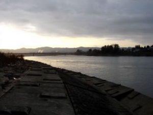 写真:信濃川
